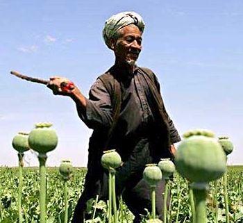 opium_afghan_man_2